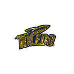 Toledo Sport Logo Sequined Iron On Patch