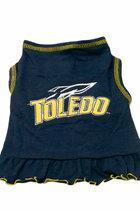 University of Toledo Pet Cheerleading Dress