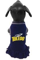 University of Toledo Pet Cheerleading Dress